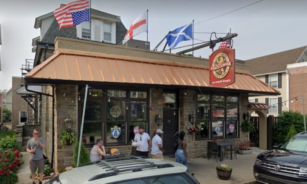 "29 violations for Kings Corner Pub in Jenkintown, ""Rodent like droppings observed on basement floor and equipment"""