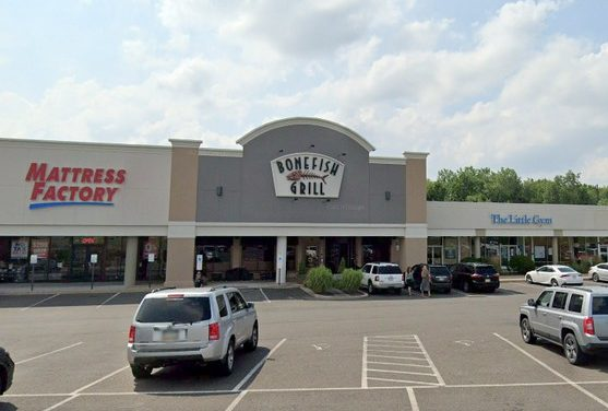 Langhorne Bonefish Grill fouls inspection; Numerous dead and alive roaches, Numerous fruit flies were observed