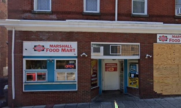 Marshall Food Mart in Norristown fouls inspection; fly-like insects observed in back room dead mouse like rodent on trap in back room roach-like insects observed on glue traps back room