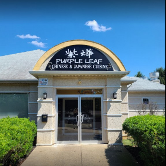 Purple Leaf Cuisine in Morrisville inspection; Interior baffle within the ice machine contains a pink, mold-like substance, Rodent droppings were observed on the floor next to the ice machine and at the far right wall of the cook line