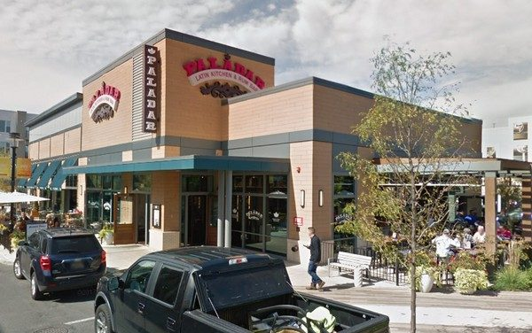 King of Prussia's Paladar Latin Kitchen and Rum Bar fouls inspection; fly like insects observed throughout prep area- 2 times repeat violation