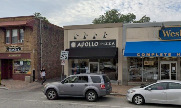 Apollo Pizza Glenside inspection 15 violations; Live and dead roach-like insects in basement, Rodent-like droppings observed in kitchen behind mixer and near rear door to facility