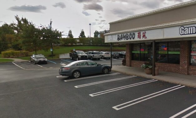 20 violations for Bamboo in East Norriton; Date marking lacking on food containers, Rust observed on walls of small chest freezer, Cutting boards with deep grooves and heavy discoloration