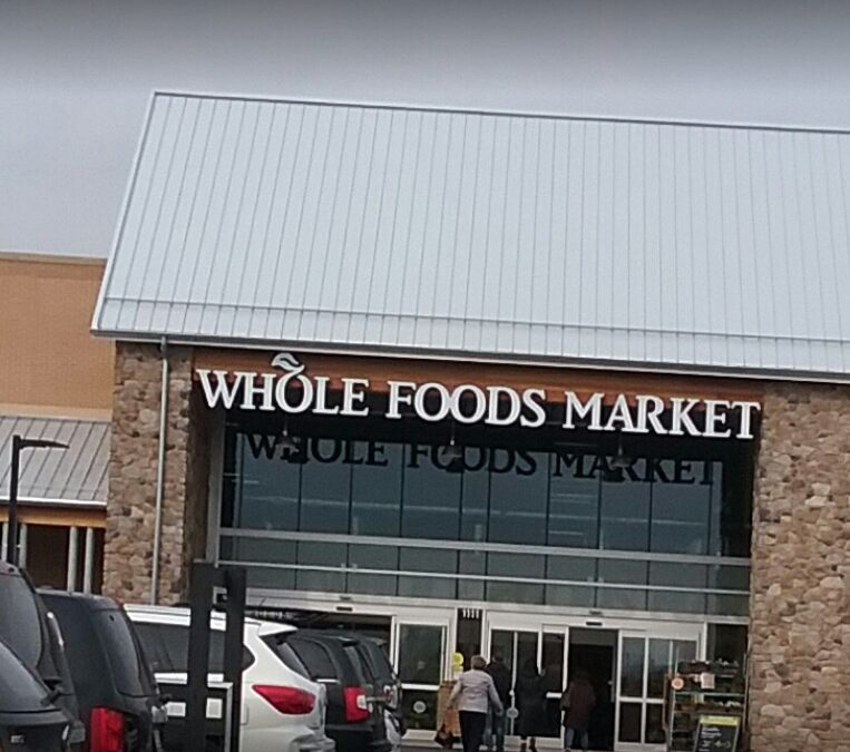 Spring House Whole Foods inspection finds Fly-like insects observed throughout hot foods department, 8 violations