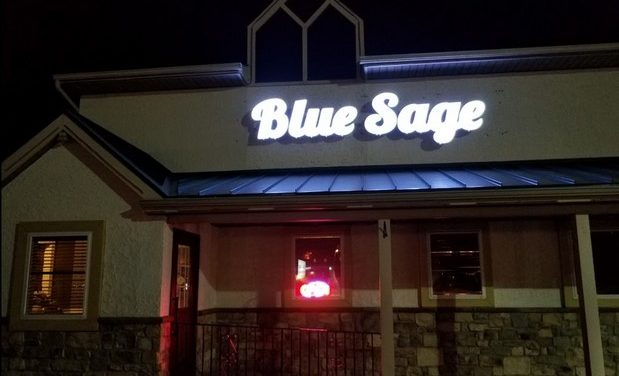 Blue Sage Vegetarian Grille in Southampton inspection; Numerous expired outdated foods- cheese from August 30, 8 violations