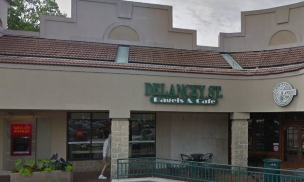 Rodent droppings, again, along with flies found at Delancey ST Bagels in Wynnewood says Health Department