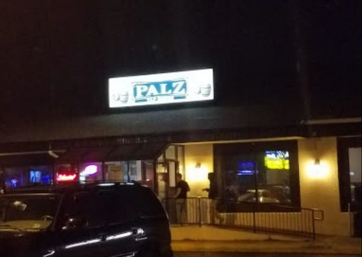 10 violations at Palz Tap House in Huntindon Valley; Drain fly like insects at basement mop sink area, Light bulb cages and glass covers with dripping grease