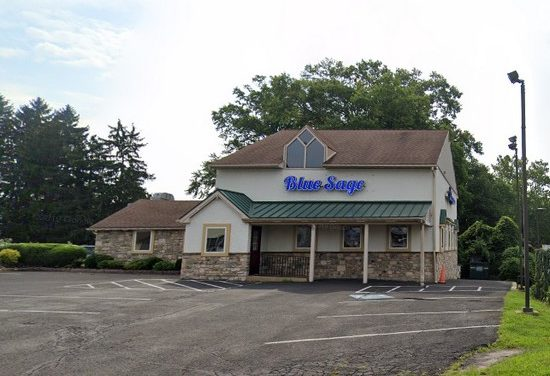Blue Sage Vegetarian Grille fouls 2nd inspection in 2020; Mouse droppings in front area where the bar 3 compartment sink is located