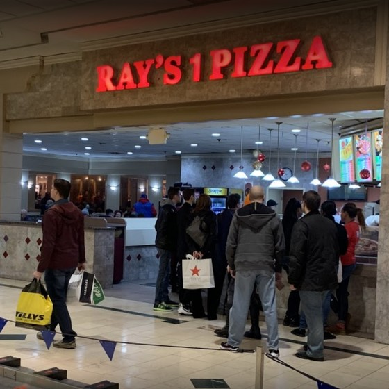 Inspection Ray's #1 Pizza Lehigh Valley Mall; evidence of rodents/insect activity in dough mixer/dry storage areas, no pest control program