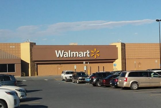 Numerous rodent droppings in pet food aisles at Walmart on Grayson Rd outside Harrisburg- warning letter will be issued